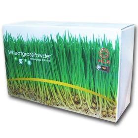 Wheatgrass Powder (66 sachets)