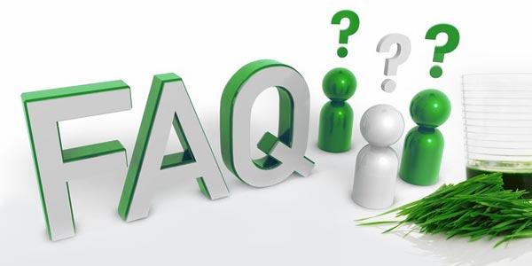 Wheatgrass Powder FAQ